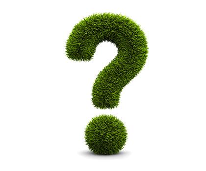 Fragen_web
